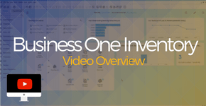 Business One Inventory Video