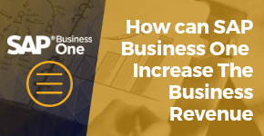 How can SAP Business One Increase The Business Revenue