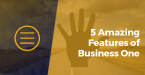 5 Amazing Features of Business One