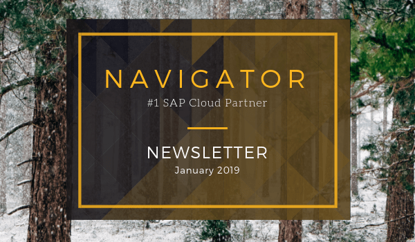 January 2019 Newsletter | Navigator Business Solutions