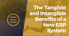 The Tangible and Intangible Benefits of a New ERP System