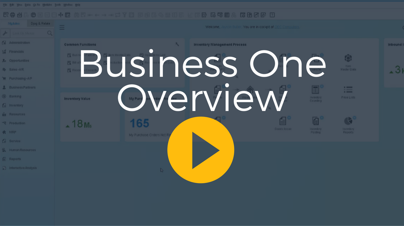 Business One Overview