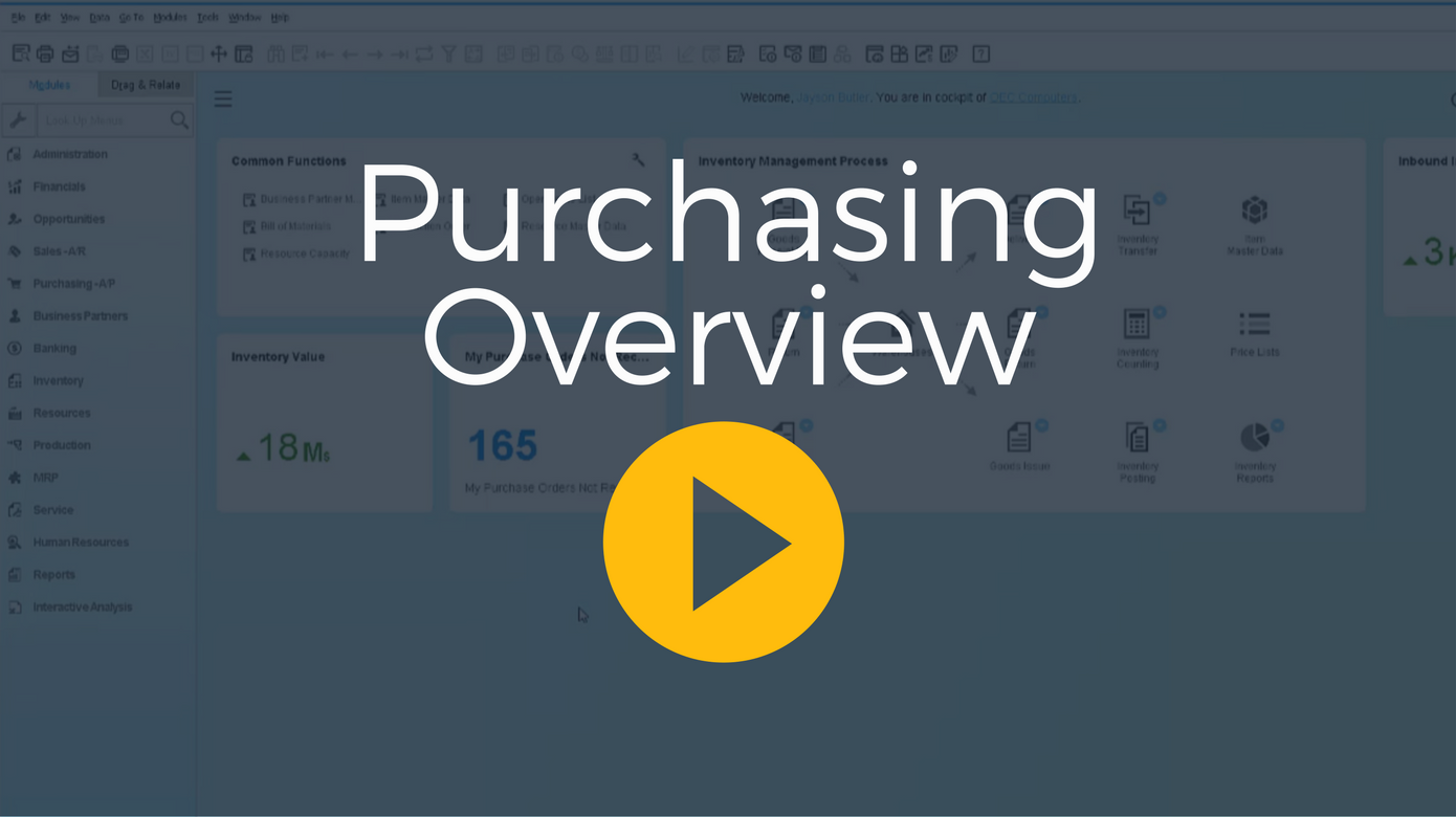 Business One Video Purchase Process