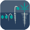 Cannabis Cultivators and Producers